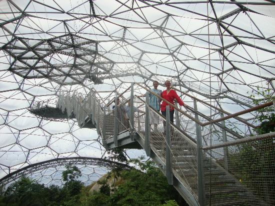 Eden Project Stairs To Aerial Platform
