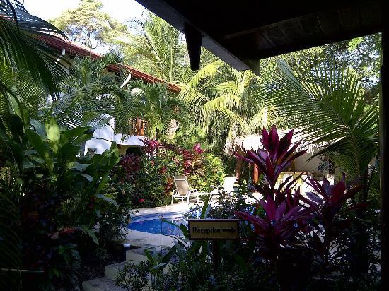 Villa Tortuga: Tranquility