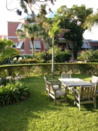 فندق رويال بامز: View from Garden rooms 