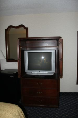 Quality Inn Rochester Airport: The TV in the Room