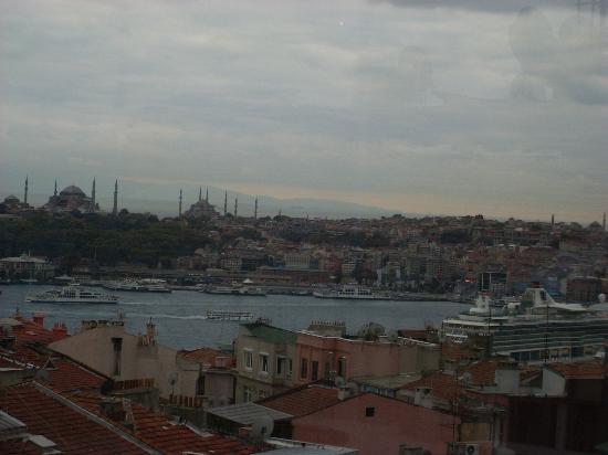 วิลล่า ซูริค: vue de la terrace