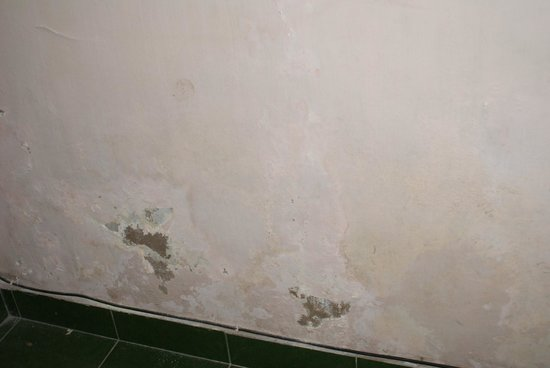 Three Brothers Bungalows: Peeling nasty bedroom walls