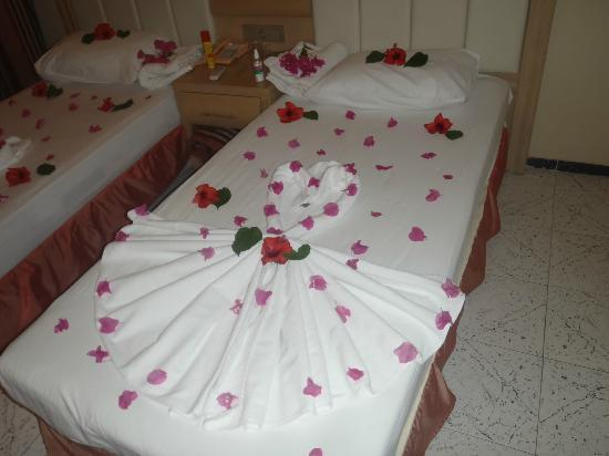Candan Apart Hotel : beds