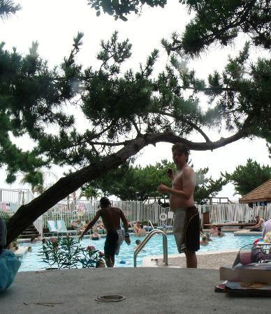 Holiday Inn Ocean City : Pool area