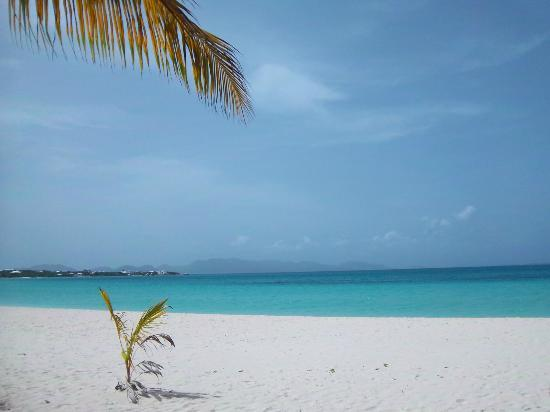 Rendezvous Bay Beach : Rendezvous Bay View in front of the Great Anguilla House Resort