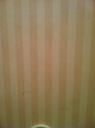 Days Inn Newark/Wilmington: Dirty bathroom wall with stains