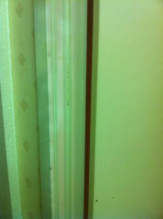 Days Inn Newark/Wilmington: Dirty bathroom door