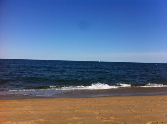 beach on Plum Island