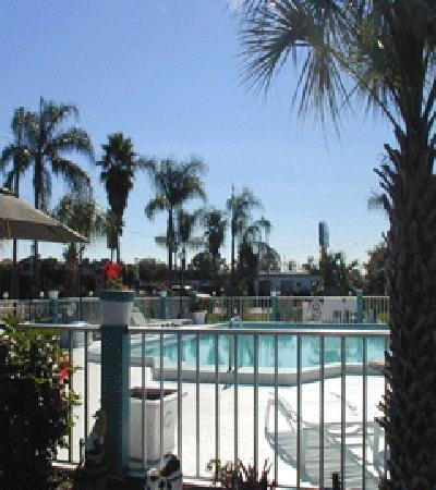 Floridian Inn: Pool View