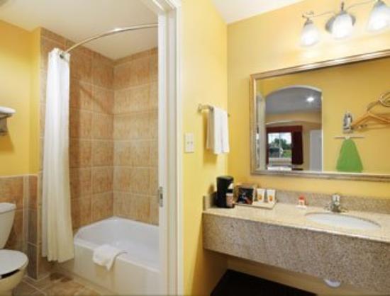 Palace Inn Sam Houston Parkway North: Bathroom