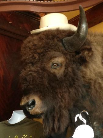 Bumpin Buffalo Bar & Grill : Fun times at Bumpin Buffalo