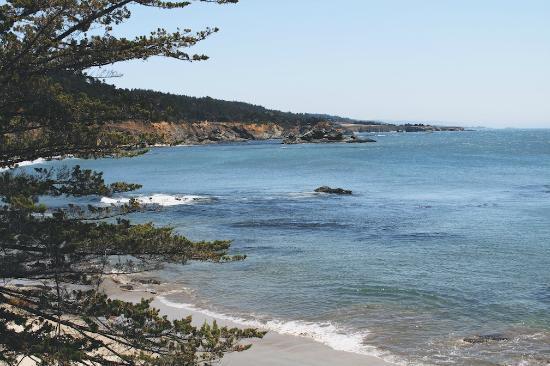 Mar Vista Cottages : Private Beach