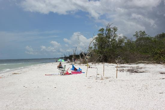 Lovers Key Resort : Lovers Key Beach (that you have to drive to)
