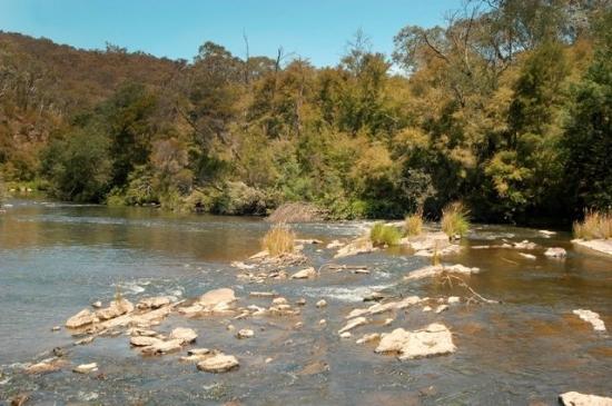 เยริ่งจอร์จคอทเทจ: Local Attraction - Yarra River