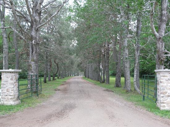 The Normaway Inn & Cabins: The driveway