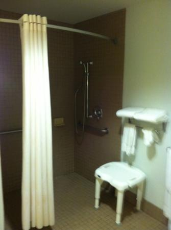 Comfort Suites Cincinnati Airport: The bathroom in room 101