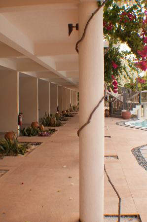 Bluewater Panglao Beach Resort: Corridor