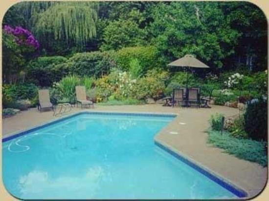 ذا ويلوز: Pool