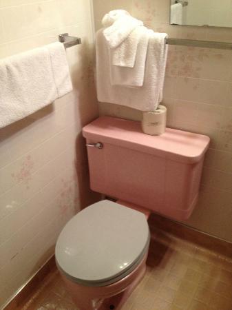 Hotel Rapids: Pink Toilet