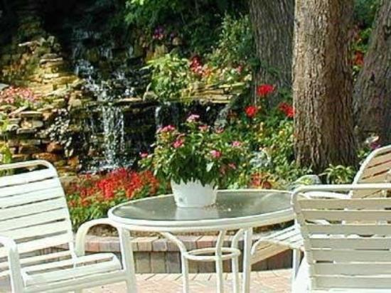 Black Forest B&B and Luxury Cabins: Patio