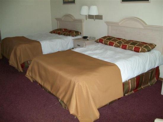 Economy Inn: Guest Room