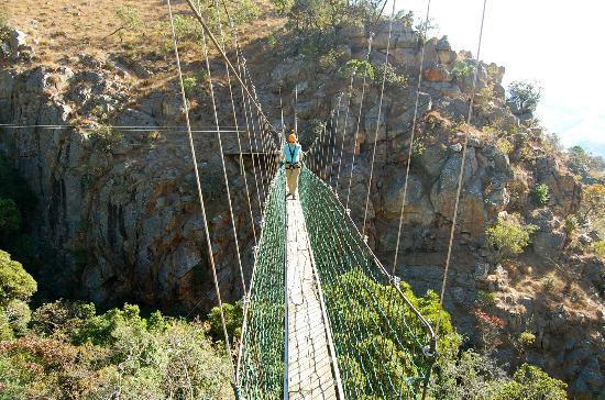 Hhohho District, สวาซิแลนด์: suspension bridge at Malolotja