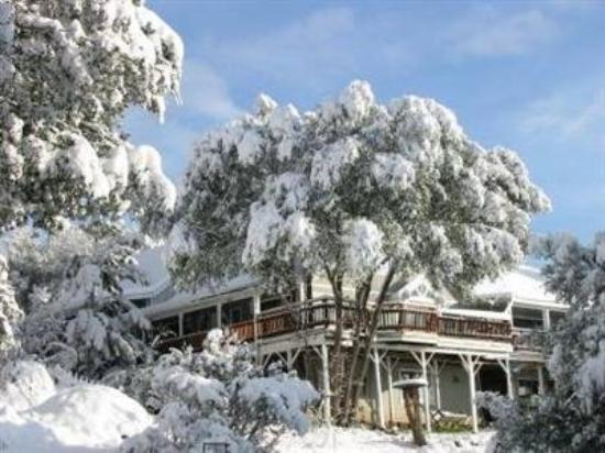 Sierra Mountain Lodge - Yosemite: Let it snow!