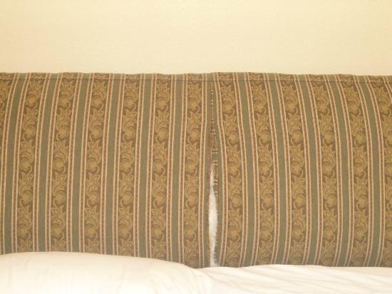 BEST WESTERN Ambassador Inn & Suites: Torn Sofa Sleeper