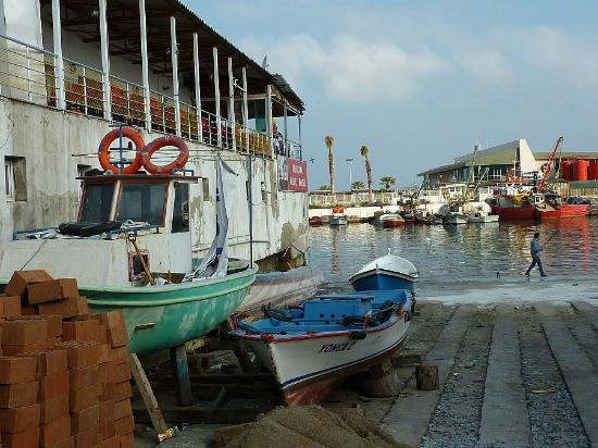 Fisherman's cafe: It's right on the waterfront Fishing Harbour.
