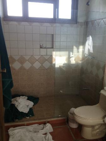 Casa Luna Hotel & Spa: Bathroom - shower - half door