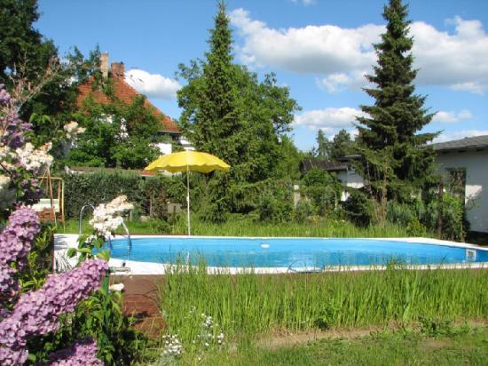 Hotel Pension Lydia: Garden