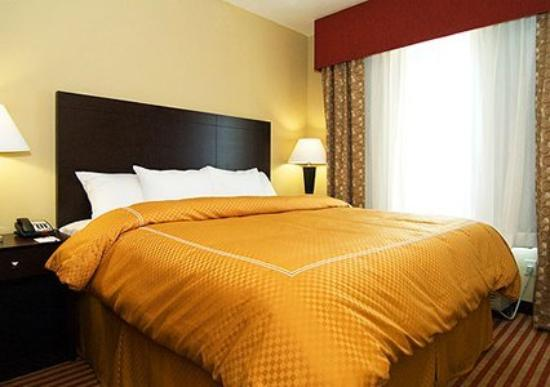 Comfort Suites San Antonio NW Near Six Flags: King Guest Room