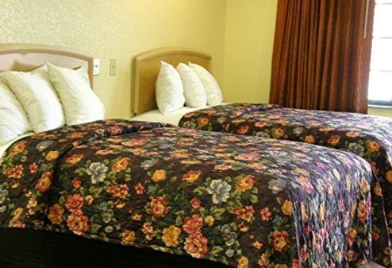 Matador Motel: Room