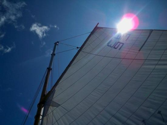 Rockland Sailing Co.: Sunny Summer Days