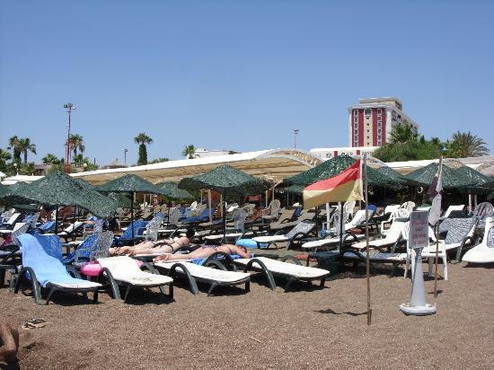Club Hotel Sera: Hotelstrand