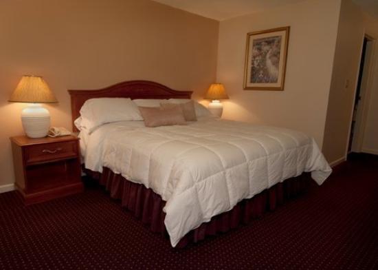 Caribou Inn & Convention Center: Caribou Suite
