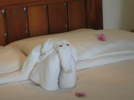 Makanda by the Sea: Towel Elephant