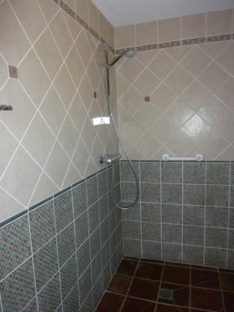La Bergerie: Shower - no curtain
