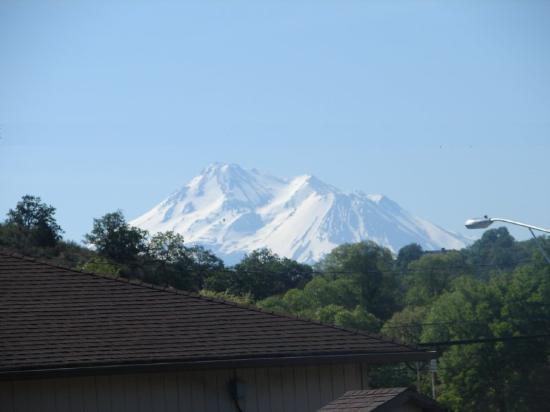 Klamath Motor Lodge: Mt.Shasta View