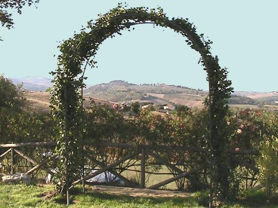 Cucina Toscana tradizionale e piatti rivisitati - Bild von Taverna ...