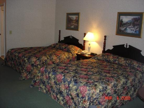 Ocoee River Inn: Standard Room