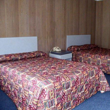 NJRex Motel Egg Harbor Township Bed