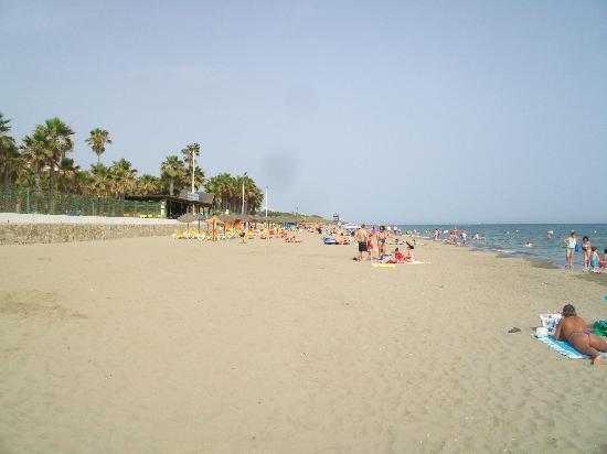 Diverhotel Marbella: .