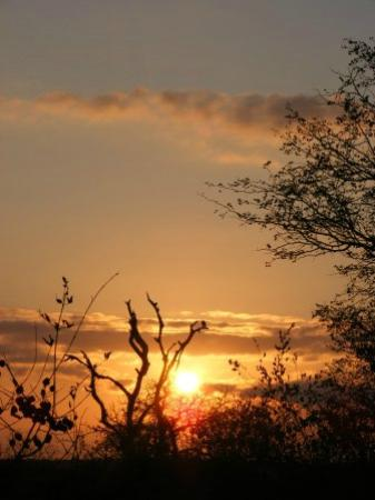 Shindzela Tented Safari Camp: Beautiful sunrise