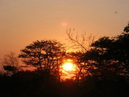 Shindzela Tented Camp: Sunrise