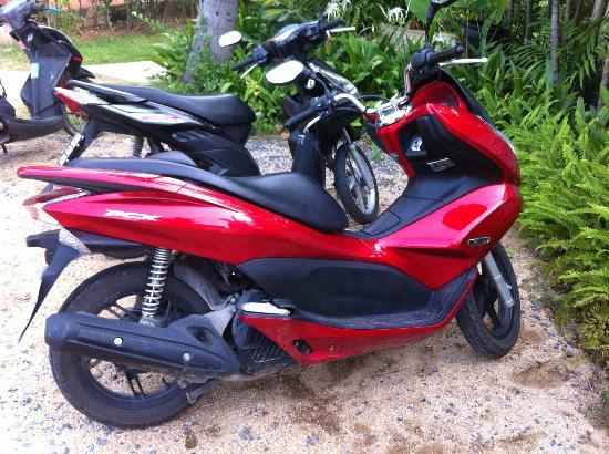 Promtsuk Buri: Excellent Honda PCX 125 Scooter