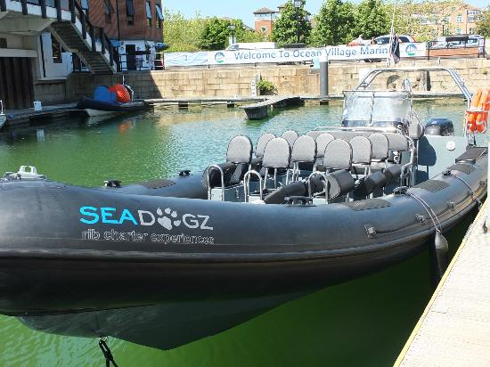 Seadogz Rib Charter Limited: It was great at the front !!!