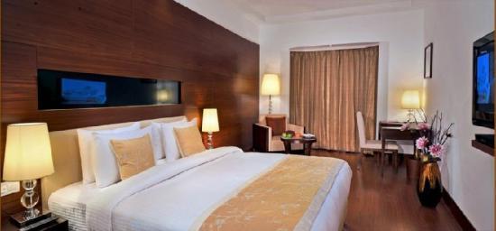 Tulip Inn Gurgaon : Room