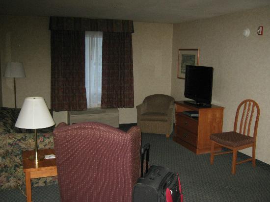 Hampton Inn & Suites By Hilton Calgary- University Northwest: living room