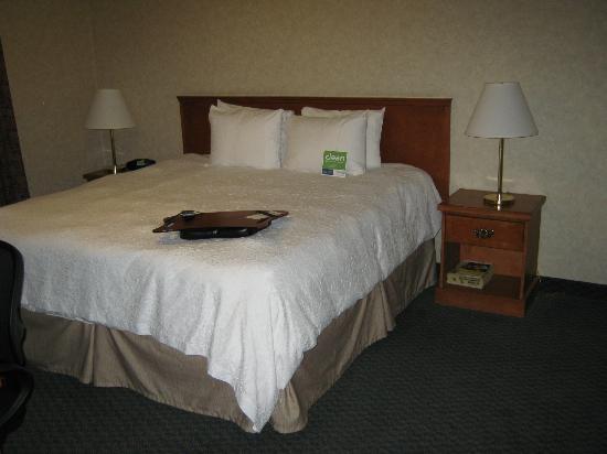 Hampton Inn & Suites By Hilton Calgary- University Northwest: bedroom